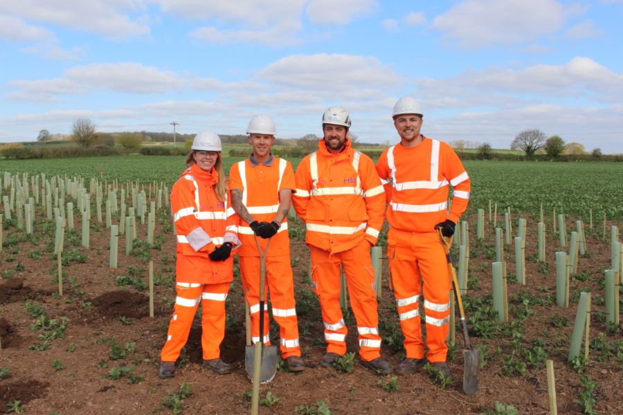 4 people in hi-vis planting trees